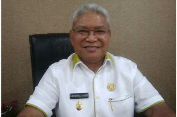 Wakil walikota Kupang, dr Hermanus Man.