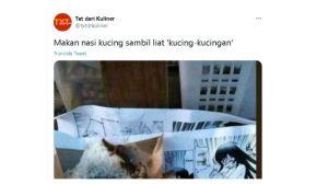 Viral! Nasi Kucing Dibungkus Komik Dewasa, Netizen Kaget Sialan