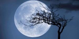 Ilmuwan Mau Buat Bank Sperma dan Sel Telur di Bulan