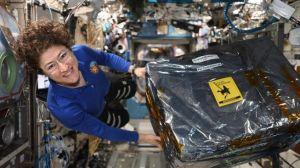 NASA Rencana Kirimkan Astronot Perempuan Pertama ke Bulan