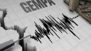 Selama 2021, BMKG Sebut 61 Gempa Terjadi di Kepulauan Nias