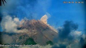 Gunung Merapi Sepekan Muntahkan 7 Kali Awan Panas Capai 2 Km