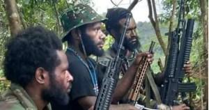 Pasca Serangan ke Nakes, Kolonel KKB Papua Tewas Ditembak TNI di Pegunungan Bintang