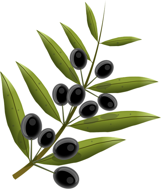 hytolive from olives - ag cera benefits