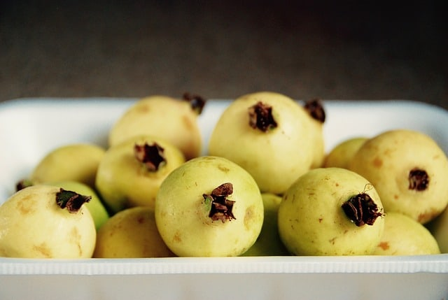 guava fruits - guava leaves and pregnancy