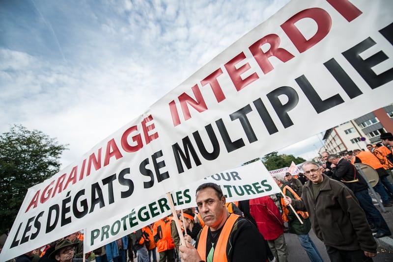 © Clément Bonvalot