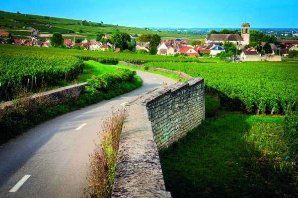 village viticole bourguignon