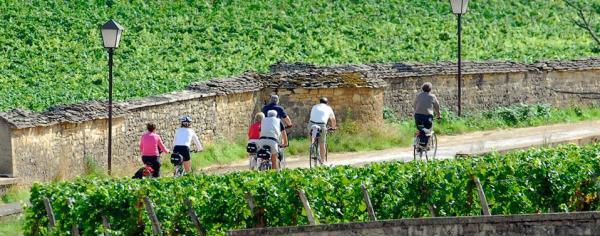 Velos-vignoble-Bourgogne_-Photo-Alain-Doire_Bourgogne-Tourisme
