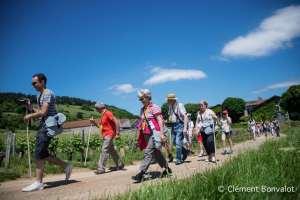 Nuits-Saint-Georges: soyez sur le chemin gourmand le 12 juin