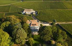 Bourgogne, Louis Latour n'est plus