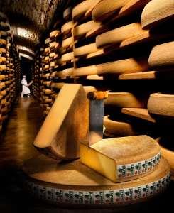 Si le comté nous était conté (Nuits, fête du fromage)