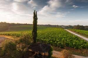 L'Italie invitée d'honneur à la Foire de Dijon