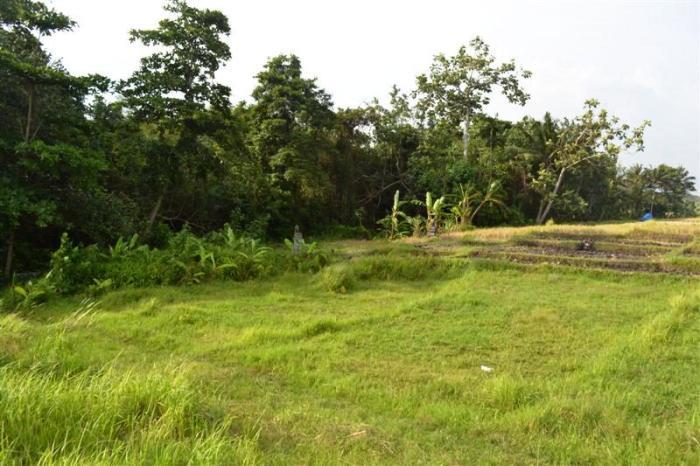 jual tanah di Cemagi Canggu