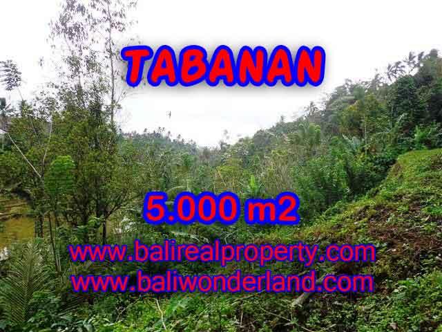 JUAL TANAH DI TABANAN BALI TJTB139 - PELUANG INVESTASI PROPERTY DI BALI
