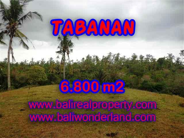 TANAH DIJUAL DI TABANAN BALI TJTB140 - PELUANG INVESTASI PROPERTY DI BALI
