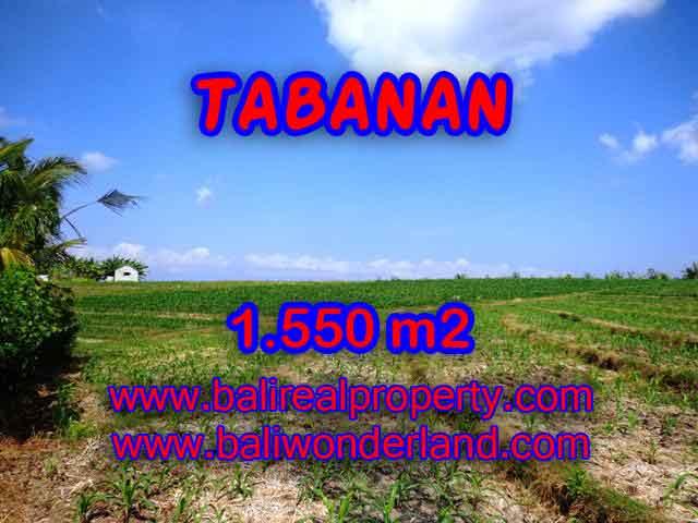 MURAH ! TANAH DI TABANAN BALI TJTB134 - INVESTASI PROPERTY DI BALI