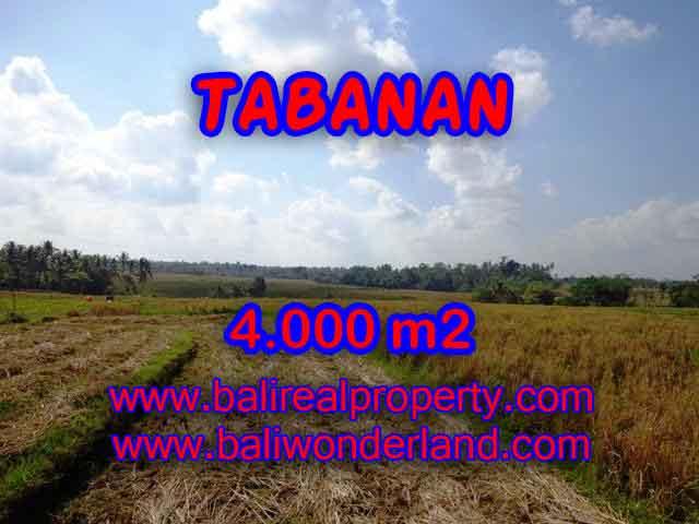 DIJUAL TANAH MURAH DI TABANAN TJTB132 - PELUANG INVESTASI PROPERTY DI BALI