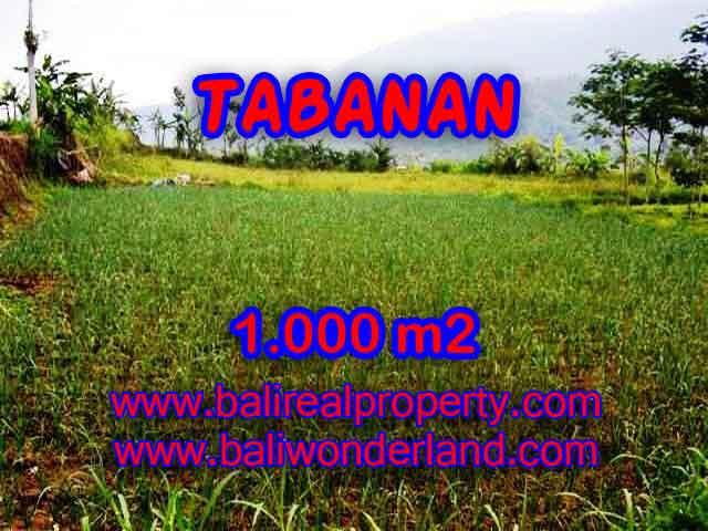 TANAH DI TABANAN DIJUAL TJTB101 - INVESTASI PROPERTY DI BALI
