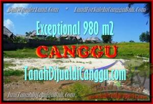JUAL TANAH di CANGGU BALI 980 m2 di Canggu Pererenan
