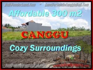 DIJUAL MURAH TANAH di CANGGU BALI 300 m2 di Canggu Pererenan