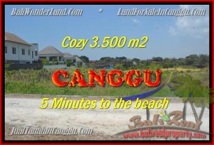 INVESTASI PROPERTI, TANAH MURAH DIJUAL di CANGGU TJCG165