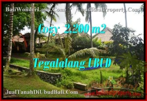 JUAL TANAH MURAH di UBUD 2,200 m2  View Sawah dan sungai link Villa