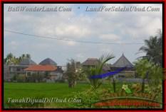 DIJUAL TANAH MURAH di UBUD Untuk INVESTASI TJUB428