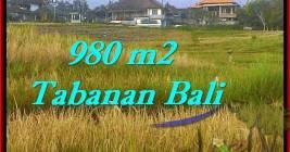 JUAL TANAH di TABANAN BALI 980 m2 View Sawah dan Laut