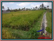 DIJUAL MURAH TANAH di UBUD BALI 6.5 Are di Ubud Tampak Siring