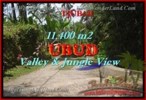 TANAH di UBUD JUAL 11,400 m2 View hutan dan Tebing