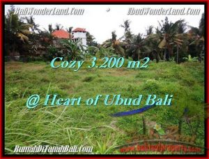 TANAH di UBUD BALI DIJUAL MURAH 3,200 m2 di Sentral Ubud