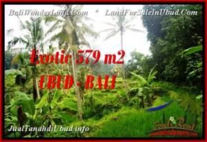 TANAH DIJUAL MURAH di UBUD 579 m2 di Ubud Tegalalang