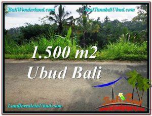 TANAH MURAH JUAL di UBUD BALI 15 Are View Kebun dan Tebing