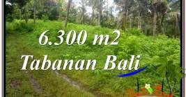 DIJUAL MURAH TANAH di TABANAN BALI TJTB313