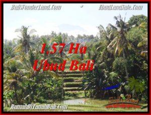 TANAH MURAH JUAL di UBUD BALI 157 Are View Sawah, gunung dan sungai