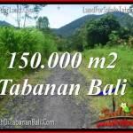 TANAH MURAH DIJUAL di TABANAN 150,000 m2 di Tabanan Penebel