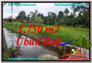 TANAH di UBUD DIJUAL MURAH Untuk INVESTASI TJUB557