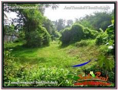 TANAH di UBUD BALI DIJUAL MURAH 1,500 m2 di Sentral Ubud
