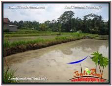 TANAH DIJUAL MURAH di UBUD 2,080 m2 di Ubud Pejeng
