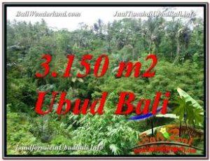 TANAH di UBUD BALI DIJUAL Untuk INVESTASI TJUB608