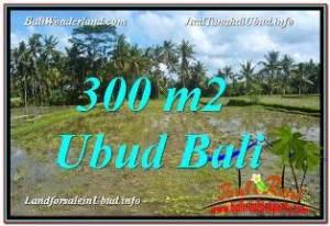 JUAL TANAH MURAH di UBUD 300 m2  View Sawah lingkungan Villa