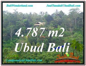 JUAL TANAH MURAH di UBUD 4,787 m2  View Kebun, Sungai dan Tebing