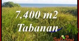 JUAL TANAH MURAH di TABANAN 7,400 m2 View Laut, Gunung dan sawah