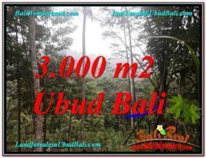 TANAH MURAH JUAL di UBUD BALI 3,000 m2  View Tebing