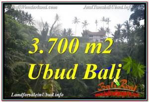 TANAH di UBUD DIJUAL Untuk INVESTASI TJUB640