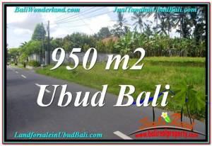 TANAH JUAL MURAH UBUD 10 Are View Sawah dan Sungai Kecil, Link. Villa