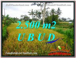 TANAH MURAH di UBUD BALI DIJUAL 2,500 m2 View Sawah link Villa dan Restorant