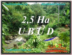 DIJUAL MURAH TANAH di UBUD 260 Are di Sentral Ubud