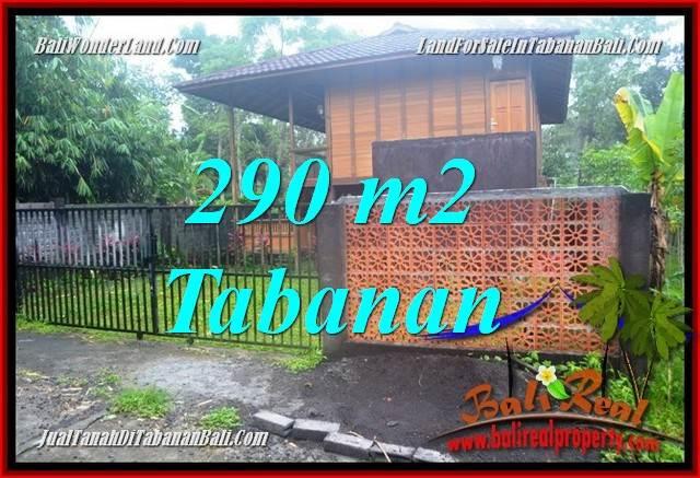 TANAH MURAH JUAL   TABANAN 290 m2  View kebun