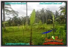 JUAL TANAH MURAH di UBUD BALI Untuk INVESTASI TJUB634
